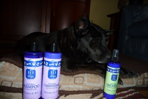 Dog Shampoo Review